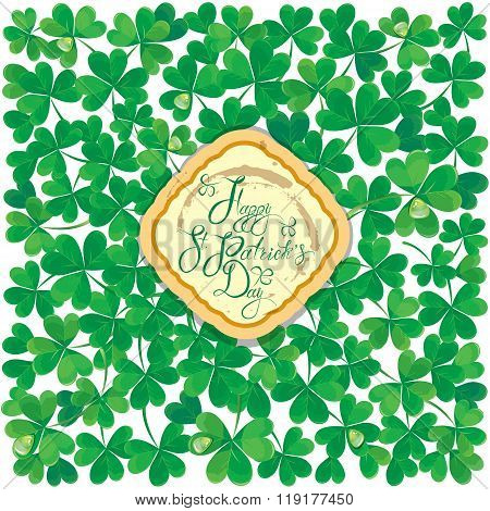 Holiday Card With Calligraphic Words Happy St. Patrick`s Day In Grundy Frame. Shamrock Green Leaves