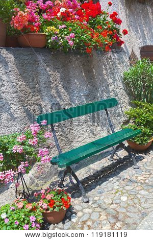 Wooden bench surrounded by flowers in pots