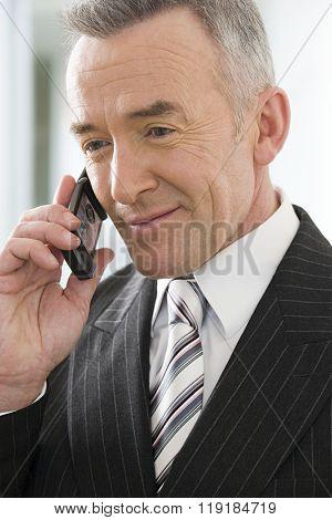Mature businessman using a cellular telephone