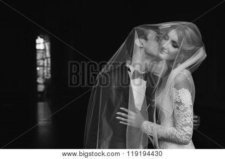 Handsome Groom Kissing Bride Under Veil, Black Background