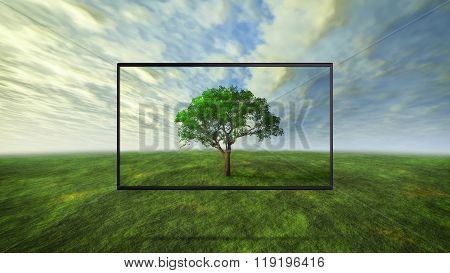 Colorful Wild Tree Concept Of Tv Background