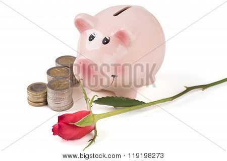Pig Piggy Bank With A Rose And A Stack Of Coins