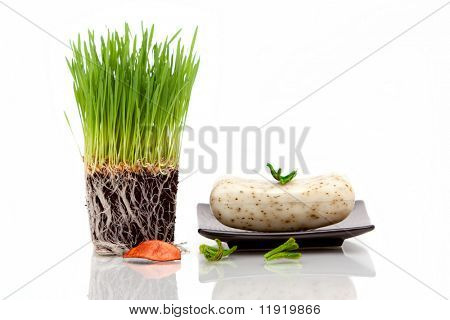 Pasto de trigo fresco y barra de jabón para decoración de spa