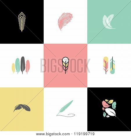 Feather. Set of modern  vector design elements and icons