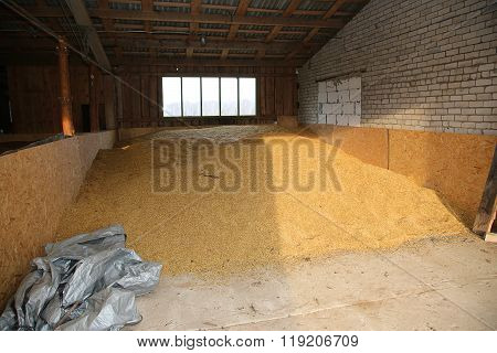 Grain Storage In Countryside