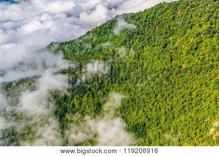 Mountain forest in sky