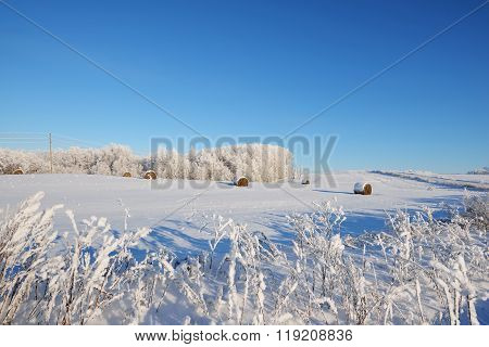 Hay Bales On A Snowcovered Winter Field