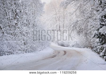 Rural Road Bend In A Winter Wonderland Deciduous Forest