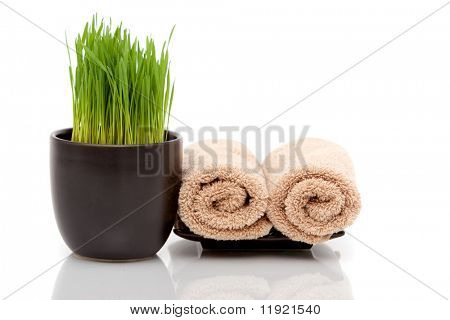 Toallas Spa y pasto de trigo sobre fondo blanco