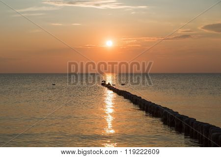 Sunset At Hiddensee With Some Seagulls