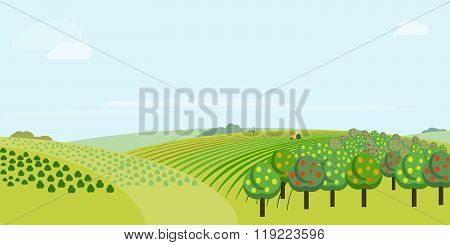 Fruit tree on meadow landscape. Green grass. Countryside meadow. Rural area. Rural fields. Village background. Farming life. Vector illustration in cartoon style. Countryside field. Rural landscape.