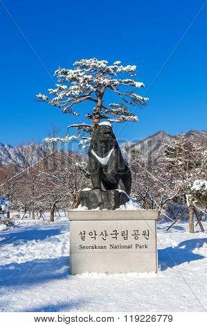 Seoraksan National Park in winter Location on Gangwon South Korea.