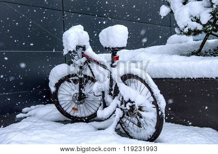 Bycicle Covered By Snow.