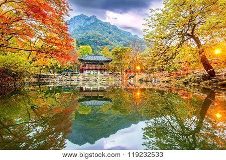 Baekyangsa Temple In Autumn,naejangsan Park In Korea.