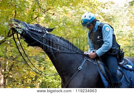 Montreal Policeman On Horse.