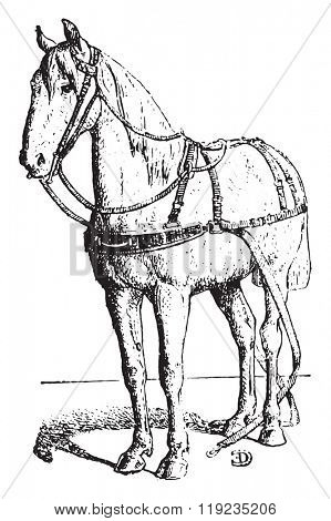 Breastplate, vintage engraved illustration. Dictionary of words and things - Larive and Fleury - 1895.