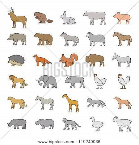 Vector Colored Silhouettes Of Animals On A White Background.