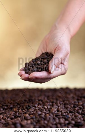 Woman Hand With Coffee Beans