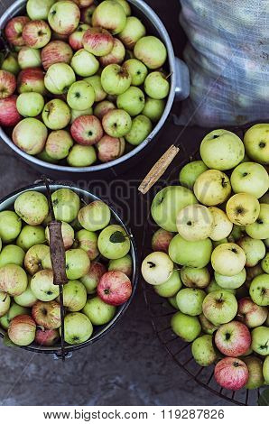 Harvest time, apples. Organic fresh apples in basket. Fresh appl