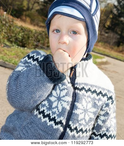 Adorable Little Child Boy At Fall. Use It For Baby, Parenting Or Love Concept