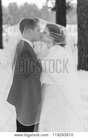 Couple Newlyweds Walking In A Winter Forest