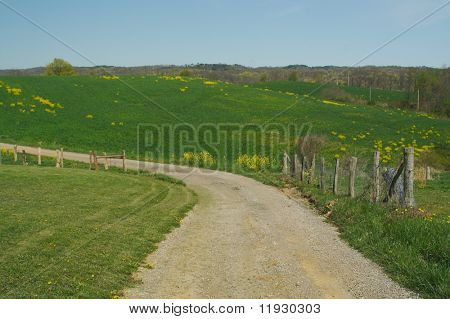 Country road, fence and meadow.