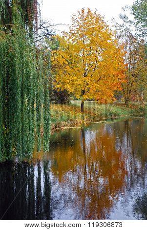 Bright autumn landscape and calm river,  Bila Tserkva, Ukraine