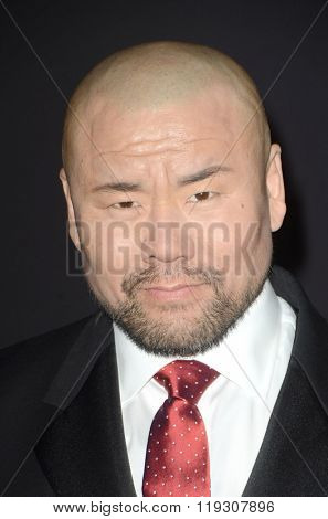 LOS ANGELES - FEB 22:  Woon Young Park at the Crouching Tiger  Hidden Dragon - Sword of Destiny Premiere at the AMC Universal Citywalk on February 22, 2016 in Universal City, CA