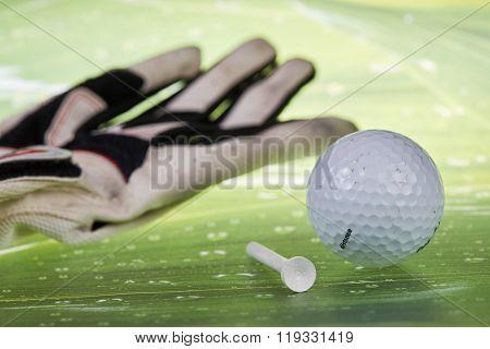 Golf Ball And Tee And Glove