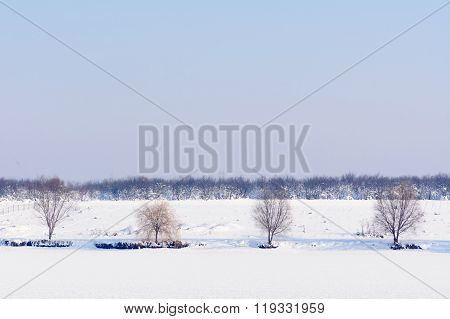 Landscape Of Trees Covered With Snow. Beautiful Winter View With Trees Covered With Snow And Cool Fr