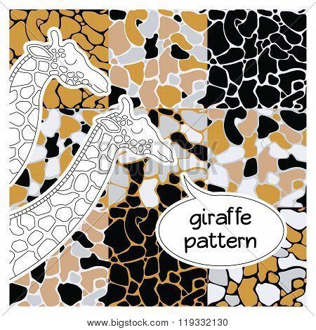 African Animal Pattern 5
