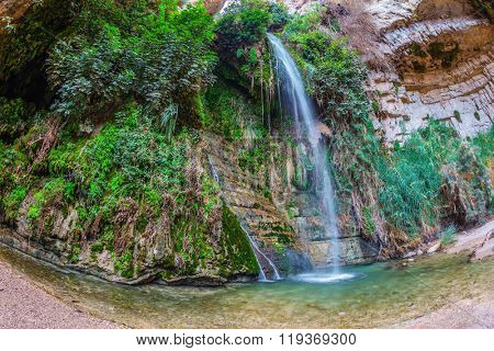 Ein Gedi - Nature Reserve and National Park, Israel. Great Falls Shulamit falls into a shallow pond with emerald water