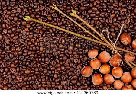 Closeup of coffee beans and filberts - top view