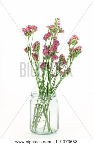 Beautiful Statice Flowers Isolated On White Background