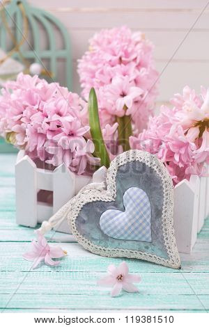 Hyacinths Flowers In Wooden Box And Decorative Heart On Turquoise Painted Wooden Background Against