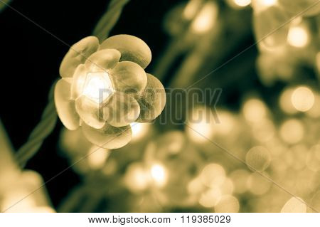 Close Up Of Flower-shaped Lights From Winter Illumination In Japan