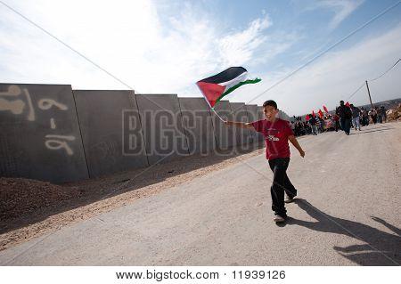 Palestinian Nonviolent Activism