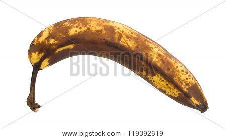 Over Ripe Banana, Isolated