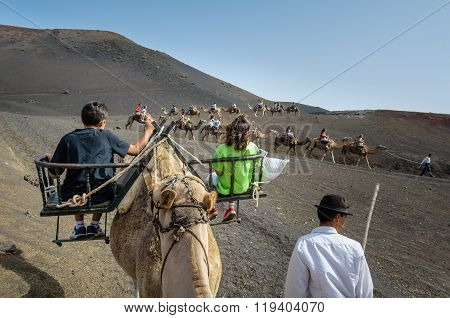 Children tourists on a camel