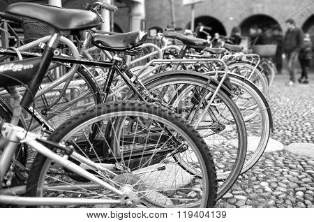 Bicycle parking. Black and white photo