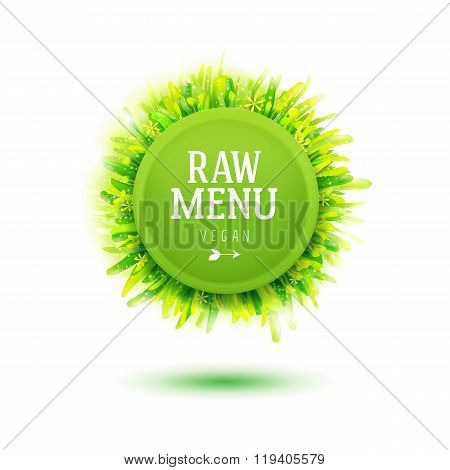 Green plate for Raw vegan menu