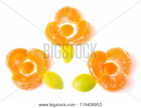 Orange flower of orange slices with green leaves