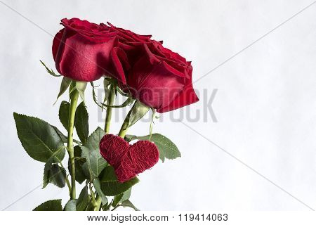 red rose with heart on white background