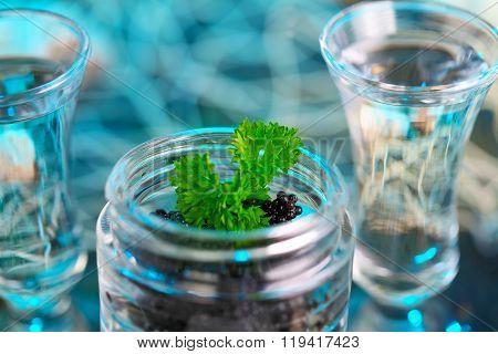 Caviar In Glass And Vodka