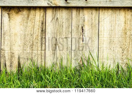Wood Texture Background And Green Grass