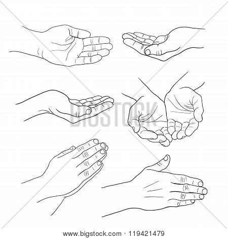 Hands Palm Set Linear Drawing On White Background