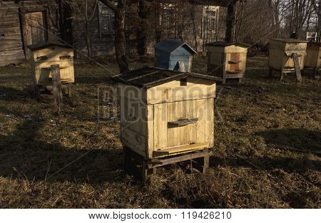 Weathered Color Bee Hives In Spring.