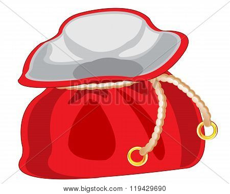 Red bag on white background