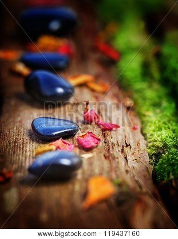 Healing Stones And Petals
