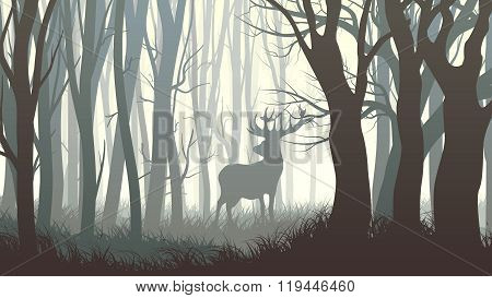Horizontal Illustration Of Wild Elk In Wood.